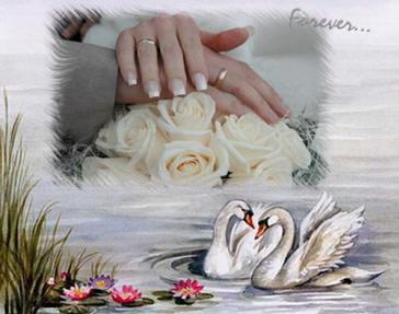 Свадебные поздравления юбилейные