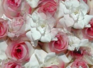 На 10 лет свадьбы цветы