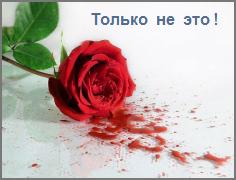 Пронзительные трагические стихи о любви